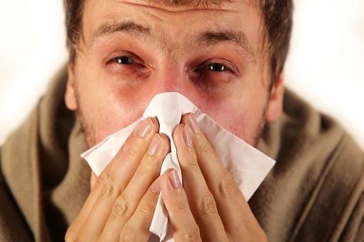 allergisch huisstofmijt